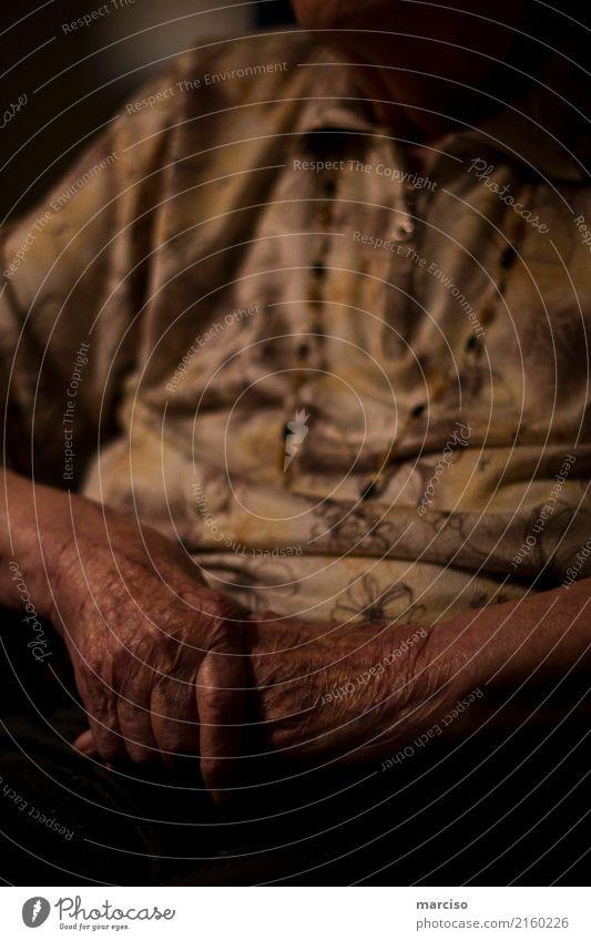 old hands Seniorenpflege Seniorenheim Mensch Weiblicher Senior Frau Großmutter Haut Hand 1 pflegebedürftig Pflegeheim Pflegedienst alt Mitgefühl Menschlichkeit