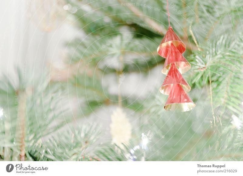 roter Baumschmuck Dekoration & Verzierung Feste & Feiern Zweige u. Äste Ast hängen gold grün Stimmung Farbfoto Gedeckte Farben Innenaufnahme Nahaufnahme