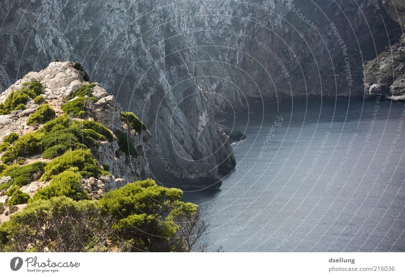 Mallorca I Natur Landschaft Pflanze Erde Wasser Sommer Schönes Wetter Sträucher Felsen Küste Bucht Meer Mittelmeer Insel dunkel frisch kalt Wärme blau grau grün