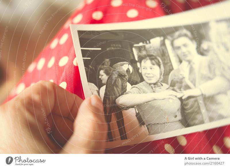 In the Past Mensch Jugendliche Junge Frau Junger Mann Hand rot 18-30 Jahre Erwachsene feminin Mode maskulin elegant authentisch Fotografie beobachten