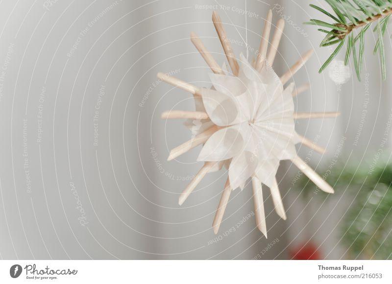 roter Baumschmuck von Thomas Ruppel. Ein lizenzfreies Stock Foto ...