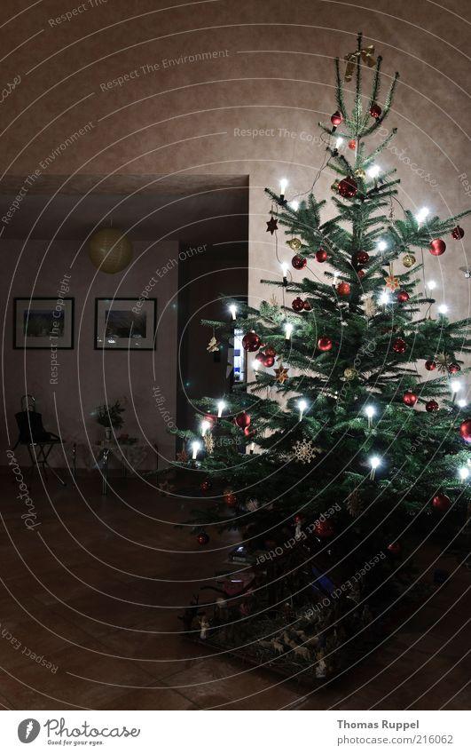 Weihnachtsbaum Weihnachten & Advent Baum grün rot Lampe hell Raum Beleuchtung Feste & Feiern Wohnung stehen authentisch Weihnachtsbaum Dekoration & Verzierung Häusliches Leben