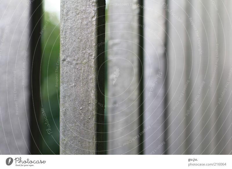 Gartenzaun Tor Zaun Eisentor Eisenrohr Eisenstangen Stahlgitter Gitter Gartentor Barriere Barrikade grau grün Metall Linie kalt silber Sicherheit Lack