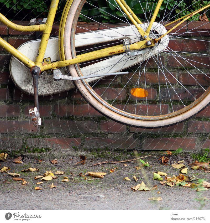 [HH10.1] - Luftspocht Blatt gelb Wand Mauer Fahrrad fliegen hoch außergewöhnlich Backstein Rad Bürgersteig Symbole & Metaphern hängen parken Schweben