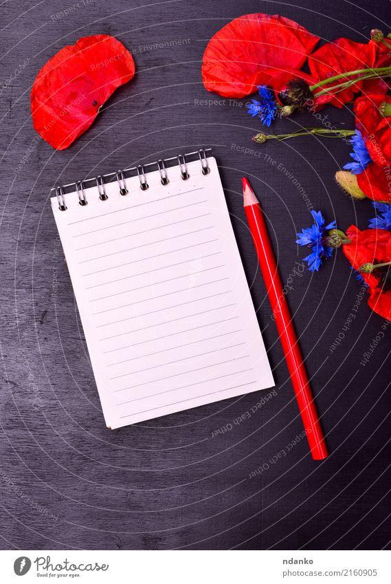 Natur Pflanze blau Sommer Farbe schön Blume rot Blatt schwarz Blüte natürlich wild Papier Blumenstrauß Beautyfotografie