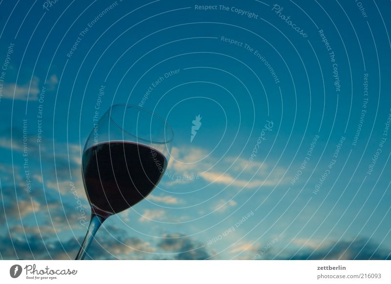 Wein Ernährung Getränk trinken Erfrischungsgetränk Alkohol Glas Himmel Wolken September Rotwein Weinglas Abhängigkeit Farbfoto Gedeckte Farben Außenaufnahme