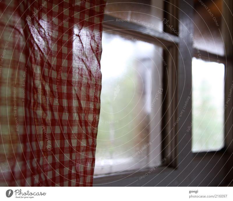 Teehaus II Fenster Vorhang Gardine Glas kalt grün rot weiß Schutz Geborgenheit Warmherzigkeit ruhig beschlagen Kondenswasser kondensieren Stoff Stoffmuster