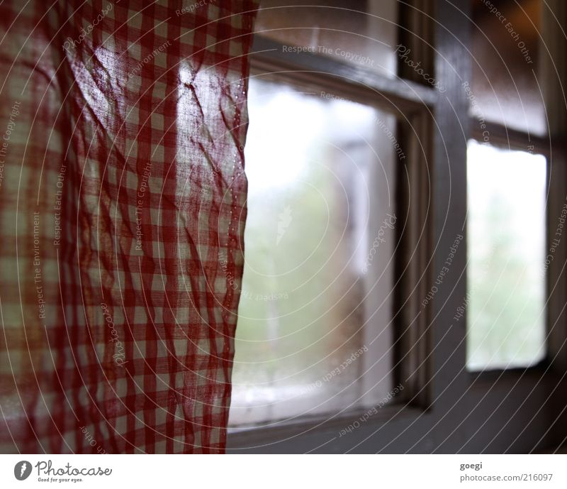 Teehaus II weiß grün rot ruhig kalt Fenster Glas Schutz Warmherzigkeit Stoff Vorhang Geborgenheit Gardine kariert Fensterrahmen Stoffmuster