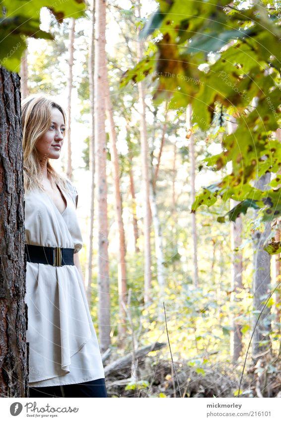 Flanieren im Wald Leben Wohlgefühl Zufriedenheit Sinnesorgane Erholung ruhig Ferien & Urlaub & Reisen Ausflug Freiheit feminin Junge Frau Jugendliche 1 Mensch