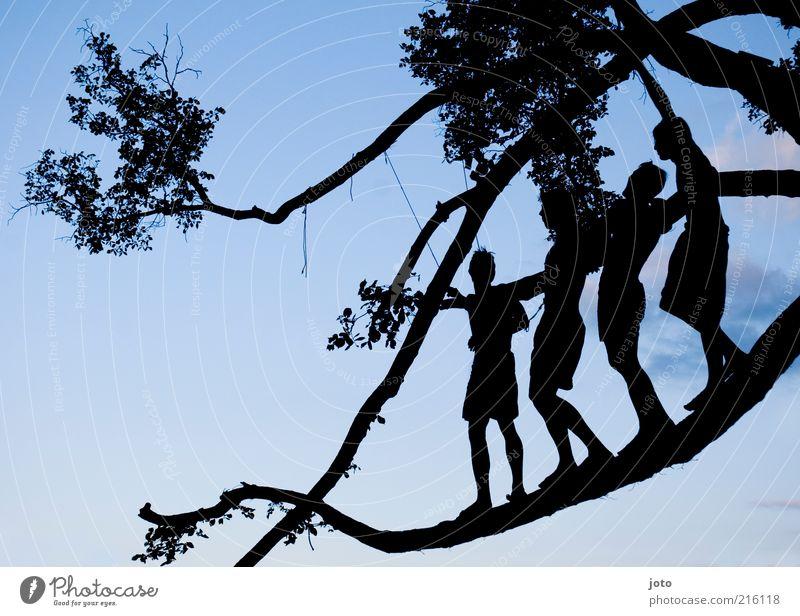 Sommernacht Mensch Natur Jugendliche Ferien & Urlaub & Reisen Baum Freude Leben Glück Menschengruppe Freundschaft Zusammensein Schwimmen & Baden