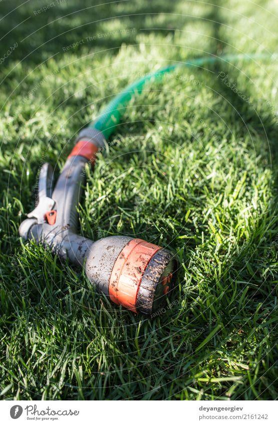 Gartenschlauch und -sprüher auf grüner Wiese Natur Sommer Hand Umwelt Gras nass Rasen Werkzeug Gartenarbeit Schlauch Tube Gärtner bestäuben Bewässerung
