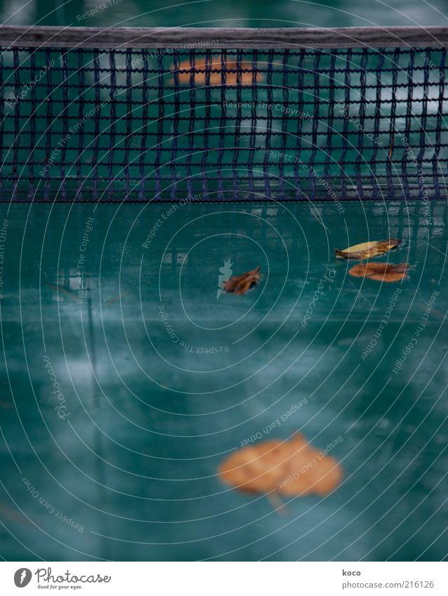 game over Wasser grün Blatt schwarz gelb Herbst kalt Sport Spielen Regen gold Freizeit & Hobby nass Vergänglichkeit Kunststoff Netz