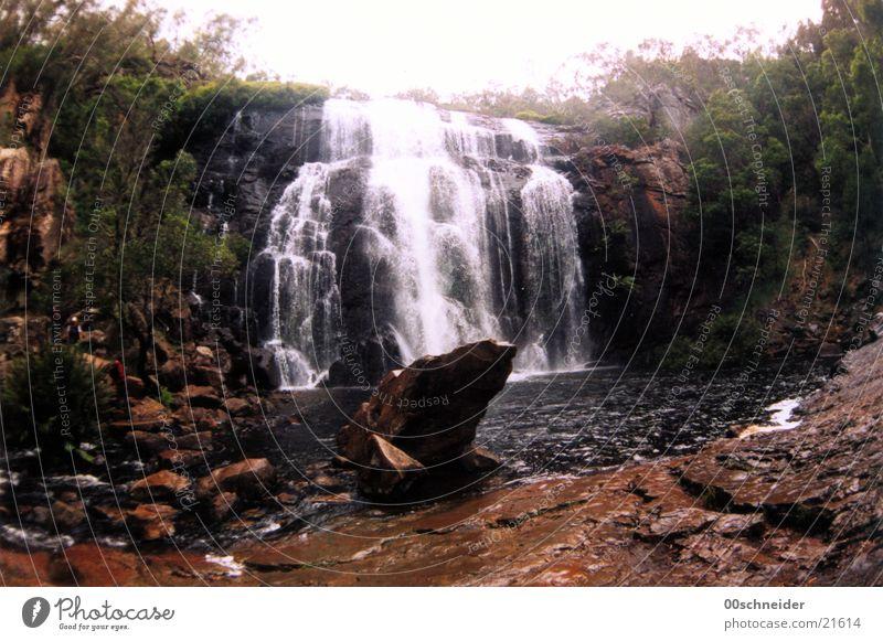 wasserfall See Urwald Australien nass Wasserfall Felsen Stein
