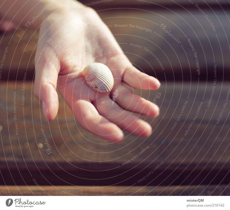 Strandfund. Natur Hand Ferien & Urlaub & Reisen Luft Finger Geschenk Kindheit Muschel zeigen finden Souvenir friedlich anbieten Handfläche Fundstück Urlaubsfoto