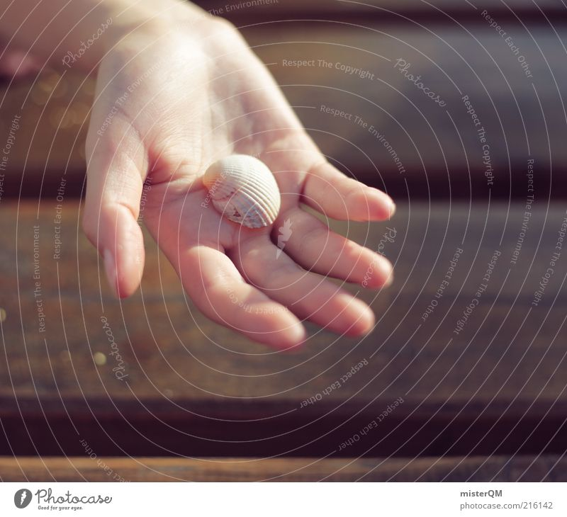 Strandfund. Natur Muschel Hand zeigen Ferien & Urlaub & Reisen Urlaubsfoto friedlich Finger finden Unschärfe Kindheit Luft Farbfoto Gedeckte Farben