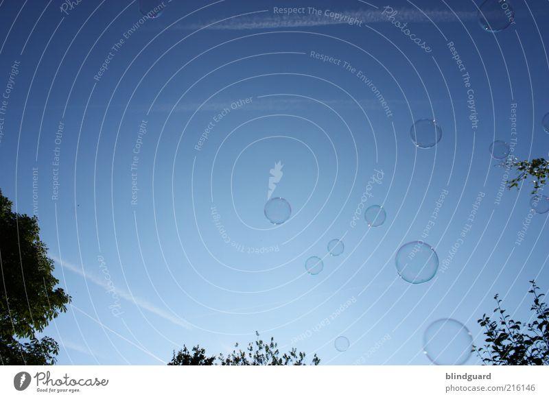 Vom Traum Bilder bestätigt zu bekommen blau Leichtigkeit Kreis rund Seifenblase glänzend Farbfoto Außenaufnahme Experiment Menschenleer Tag Licht Silhouette