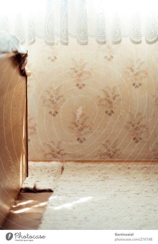 Schlafen Häusliches Leben Bett Tapete Raum Schlafzimmer Fenster hell braun beige Teppich Vorhang Gardine schlafen Farbfoto Gedeckte Farben Innenaufnahme Muster