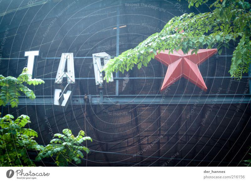 spiegelung mal anders alt Haus Schriftzeichen Dach Zeichen verfallen Verfall Bauwerk Ruine schäbig hängen Wort Halle Bildausschnitt Leuchtreklame Perspektive