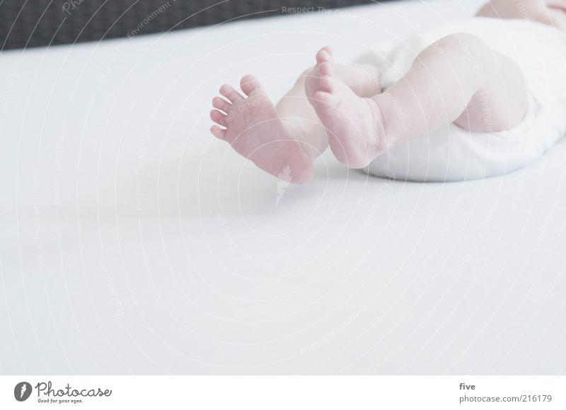 neue welt / teil 3 Häusliches Leben Bett Baby Kleinkind Kindheit Beine Fuß 0-12 Monate Wachstum weiß Gefühle Zehen Farbfoto Innenaufnahme Textfreiraum links Tag