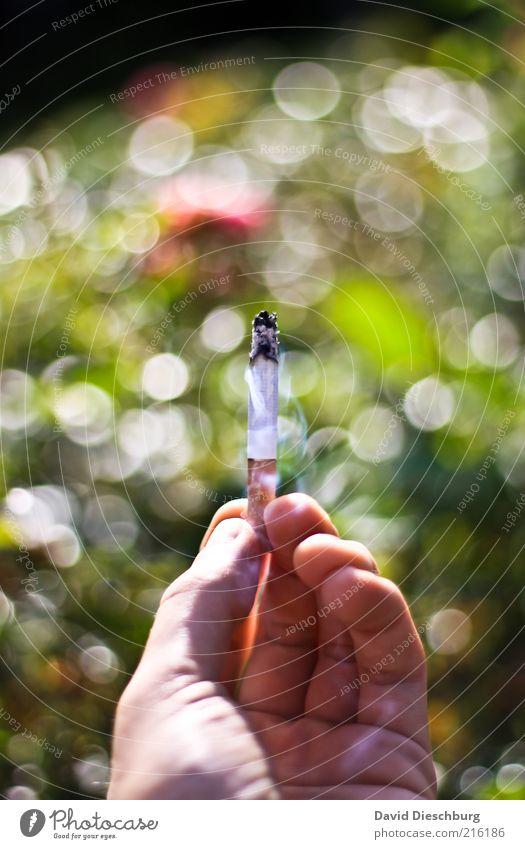 Nur noch Eine... weiß Hand grün Finger Rauchen festhalten Tabakwaren Rauch Zigarette Sucht Zigarettenasche Abhängigkeit Drogensucht Nikotin Mensch rauchend