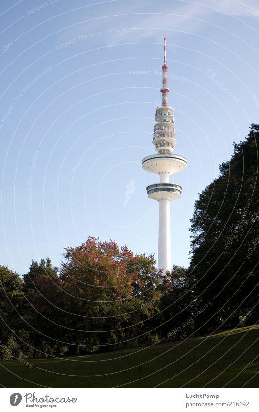Hamburgo al aire Fernsehturm hoch Herbst Herbstlaub Baum Ahorn Zweige u. Äste Schanzenpark Herbstfärbung herbstlich Herbstbeginn Herbstlandschaft Herbstwetter