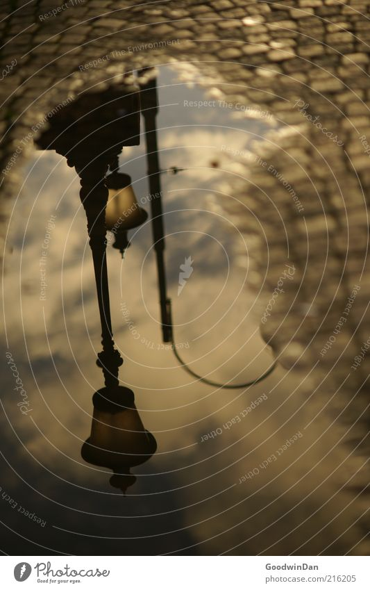 Stadtliebe Pfütze Straßenbeleuchtung Kopfsteinpflaster Stein Wasser alt kalt Stimmung Farbfoto Außenaufnahme Menschenleer Dämmerung Reflexion & Spiegelung