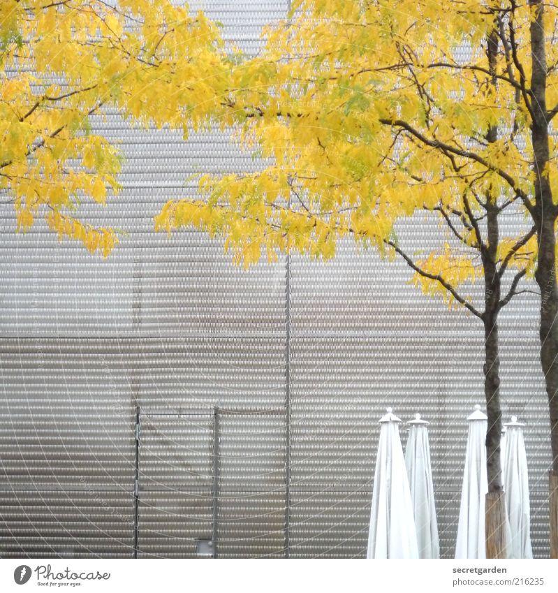 tags um halb eins auf der reeperbahn. Gastronomie Natur Herbst Baum Industrieanlage Fabrik Platz Gebäude Architektur Fassade Tür Metall Linie gelb grau weiß