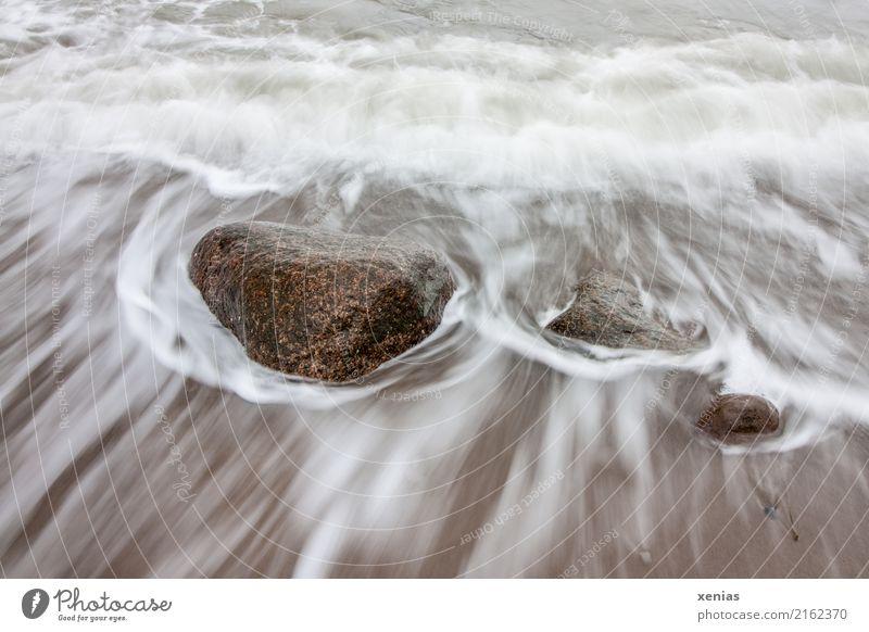 Steine in der Brandung Tourismus Strand Meer Wellen Umwelt Natur Klimawandel Küste Nordsee Ostsee kalt maritim braun weiß fließen Felsen Farbfoto Außenaufnahme