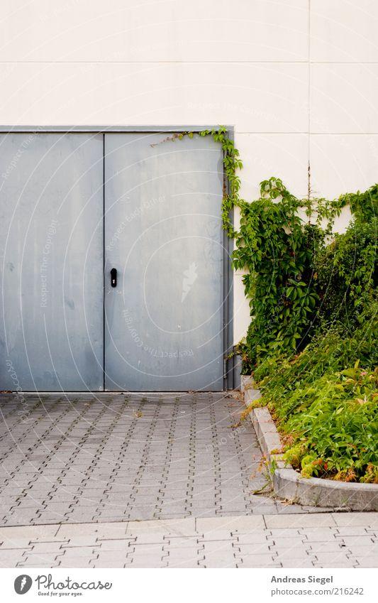 Hintereingang Natur weiß grün Pflanze Haus Straße Wand grau Stein Mauer Gebäude Metall Architektur Tür Beton geschlossen