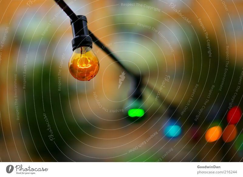 Lichterkette II kalt Stimmung hell Beleuchtung nass Glühbirne Tiefenschärfe