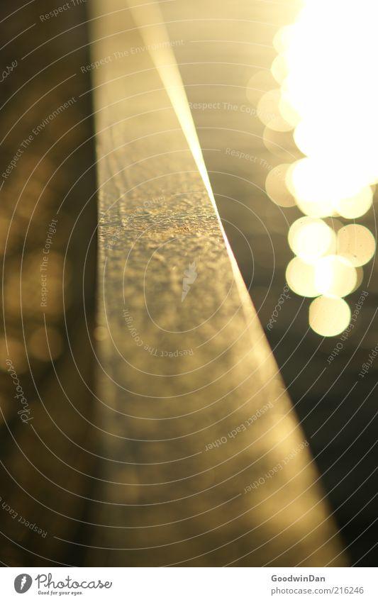 Küstenmagie III Umwelt Wasser Menschenleer Geländer Stahl Stimmung schön Dämmerung Lichtpunkt Farbfoto Außenaufnahme Kontrast Schwache Tiefenschärfe