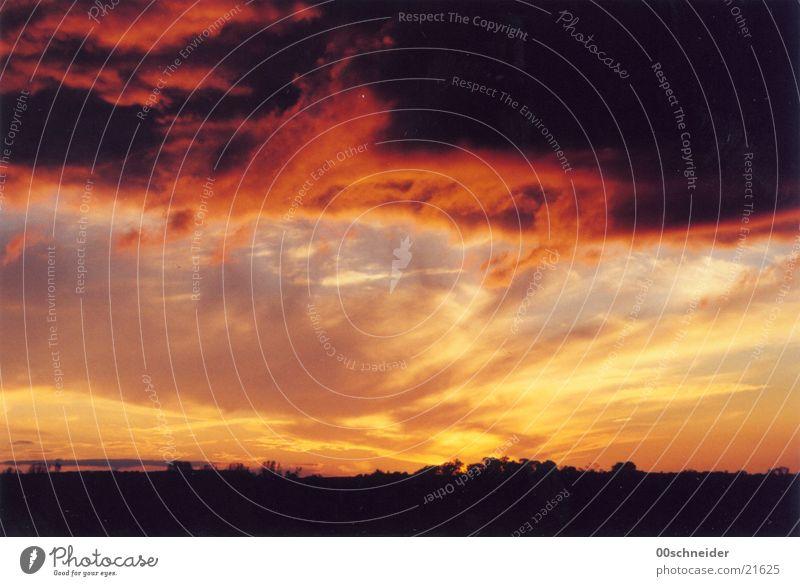 feuerfront Feld Baum rot Wolken Sonnenuntergang Himmel Brand orange Gewitter