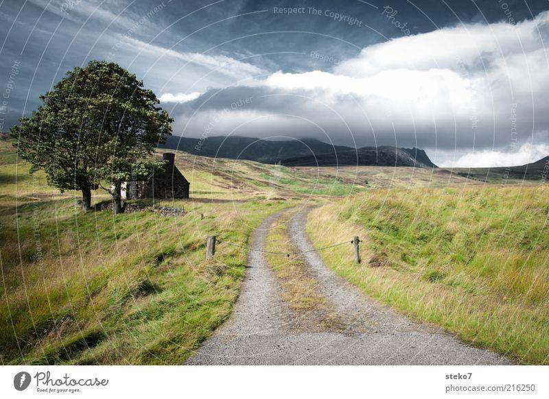 private property Landschaft Wolken Schönes Wetter Wind Baum Wiese Berge u. Gebirge Hütte Ruine Wege & Pfade alt klein Einsamkeit Einfahrt Highlands Schottland