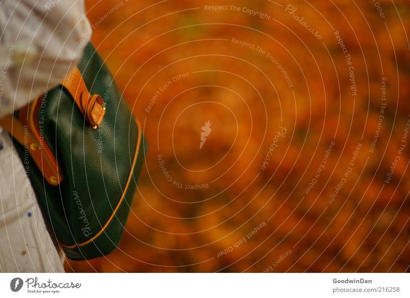 Herbstgold. III schön Stimmung braun klein modern Tasche schick Accessoire herbstlich Handtasche Herbstfärbung Herbstbeginn Objektfotografie