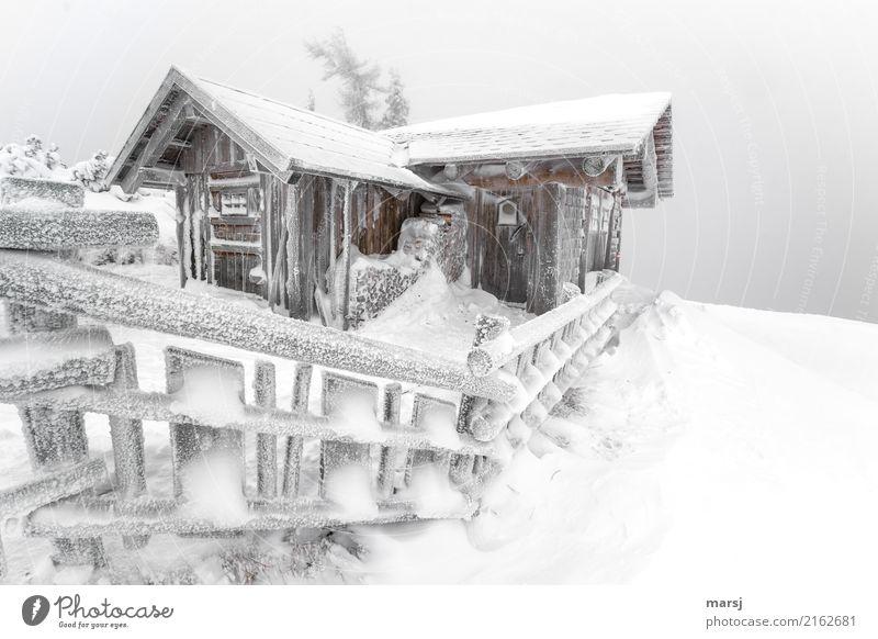 Gemma auf a Schnapserl in der schneebedeckten Hütte auf dem Berg Winter Stall Berghütte Holzzaun außergewöhnlich kalt gefroren Schnee Idylle Farbfoto
