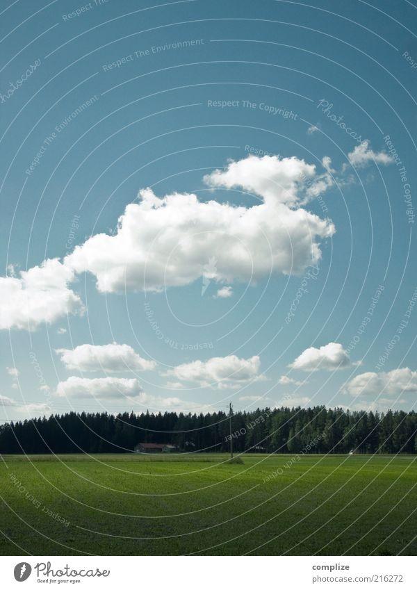 Landliebe Natur Himmel grün blau Ferien & Urlaub & Reisen Haus Wolken Wald Wiese Luft Zufriedenheit Feld Umwelt Klima Landwirtschaft Bauernhof