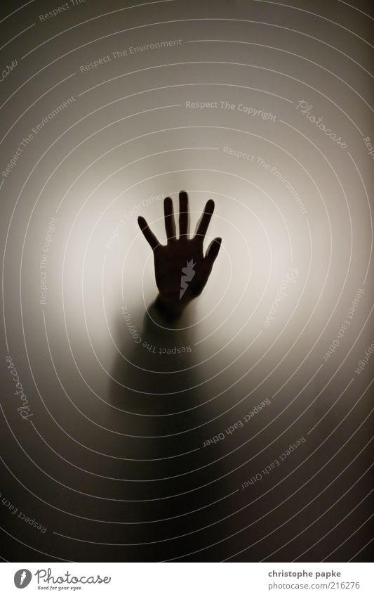 Der Besucher Hand Finger Glas berühren bedrohlich dunkel gruselig Angst gefährlich bizarr stoppen Gedeckte Farben Innenaufnahme Textfreiraum oben