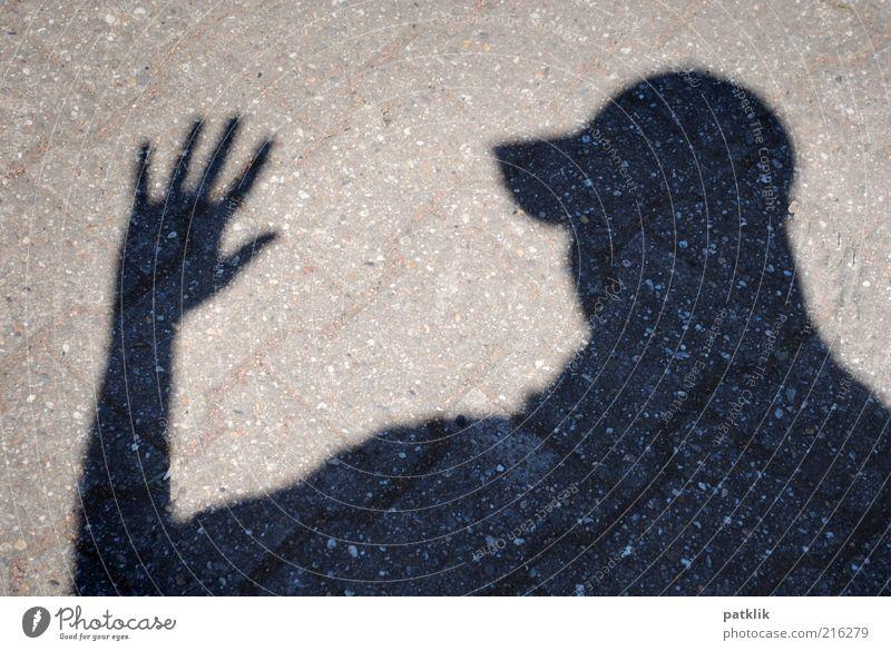 Der Schattenfotograf Hand Jugendliche schwarz Kopf Erwachsene maskulin Finger Backstein Mütze Abschied Begrüßung Pflastersteine Licht Hinweis Bodenplatten