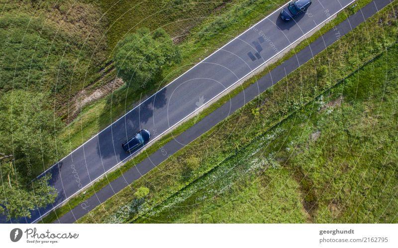 Fahrbahnwiese Umwelt Natur Landschaft Erde Pflanze Baum Gras Feld Verkehrswege Straßenverkehr Autofahren PKW grün Ordnung Wiese Farbfoto Schwarzweißfoto
