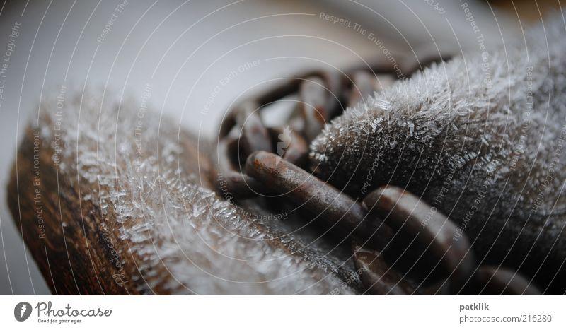Kettenfrost fest kalt nah Kraft Eis Holz Spielplatz Verbindung Winter Unschärfe Farbfoto Außenaufnahme Tag gefroren Eisen Kettenglied Menschenleer