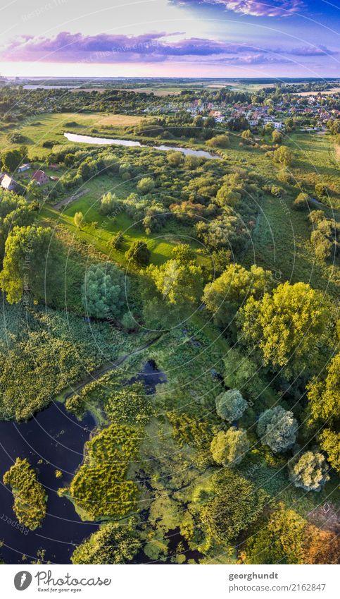 Wasserwiese I Angeln Ferien & Urlaub & Reisen Tourismus Ausflug Abenteuer Safari Expedition Umwelt Natur Landschaft Pflanze Baum Gras Sträucher Wildpflanze Park