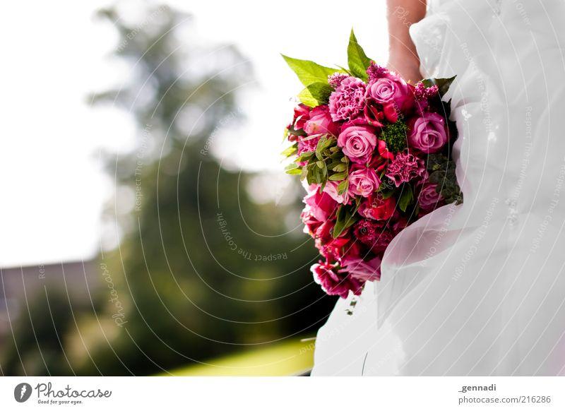 Wer will, wer hat noch nicht? Mensch rot Blume feminin Glück rosa Hochzeit Rose Kitsch Blumenstrauß Lebensfreude Leichtigkeit Tradition Junge Frau Vorfreude Bildausschnitt