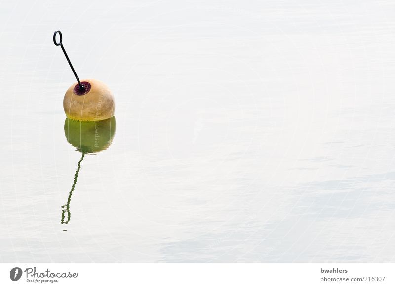 See-Kirsche Sommer Meer Wasser Schönes Wetter Küste Metall rund gelb grün Boje Farbfoto Gedeckte Farben Außenaufnahme Detailaufnahme Menschenleer Tag Schatten