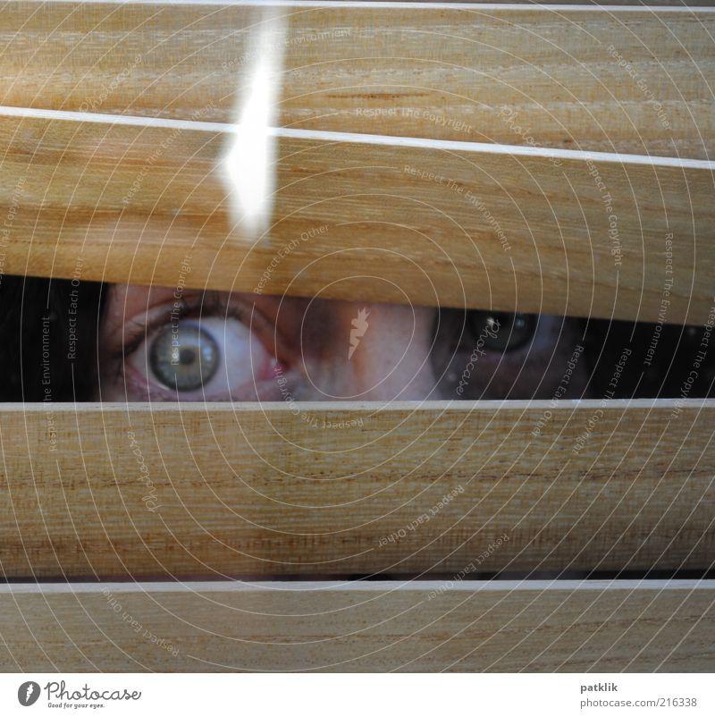 I can C U Frau Mensch grün Auge feminin Angst glänzend beobachten Neugier verstecken Panik Interesse Entsetzen Anschnitt Bildausschnitt Versteck