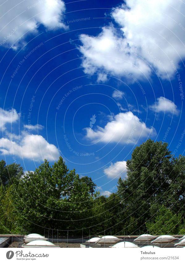 Mein Einstand: Himmel vom Dach unserer Schule aus Himmel Sonne Wolken Dach