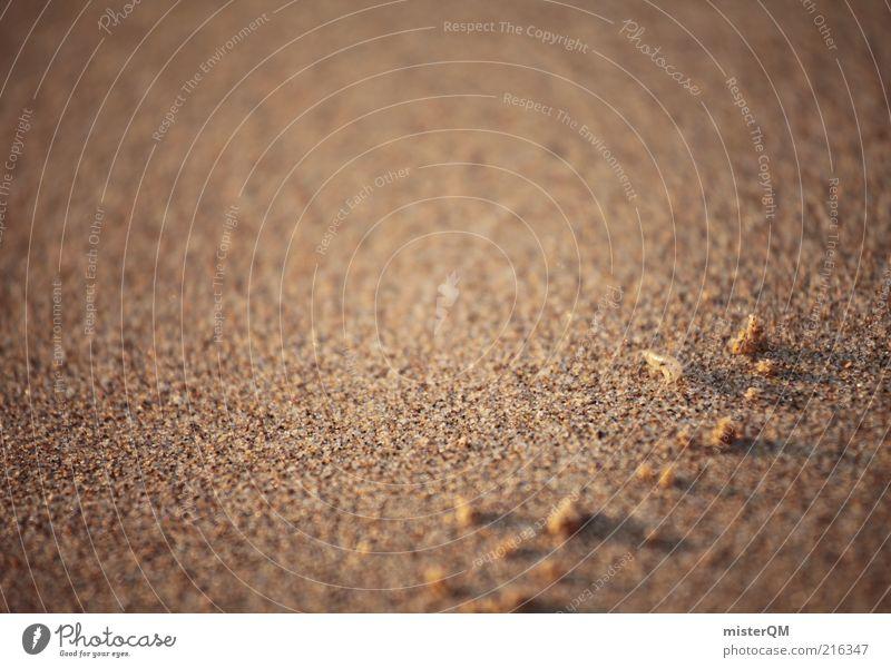 Mister Krabs. Natur Strand ruhig Erholung Sand Zufriedenheit klein Umwelt Erde ästhetisch abstrakt Urelemente Düne Ostsee Schönes Wetter fein