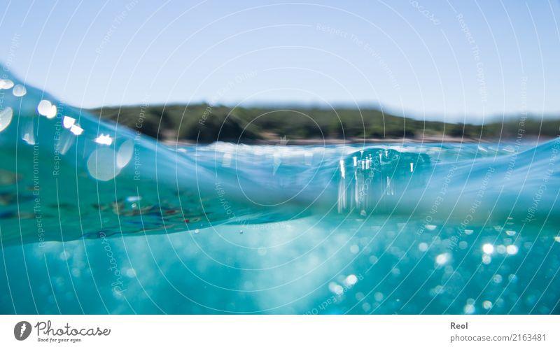 Wellen Natur Wasser Himmel Wolkenloser Himmel Schönes Wetter Meer Mittelmeer tauchen blau Kroatien Luftblase Hälfte Küste Unterwasseraufnahme Farbfoto