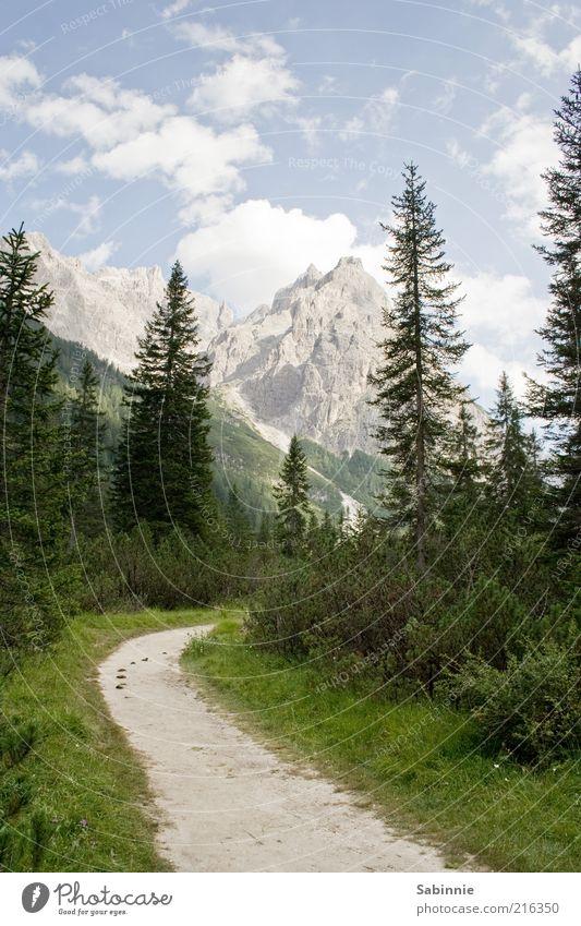 Weg zur Talschlusshütte Natur Himmel Baum grün blau Sommer Ferien & Urlaub & Reisen Wolken Wald Erholung Berge u. Gebirge grau Wege & Pfade Landschaft Umwelt Tourismus