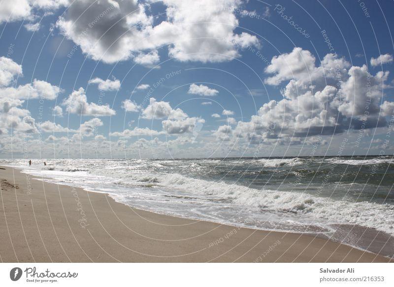 Lieber Nordseesehen als Karibikgucken Natur Wasser Himmel Meer blau Sommer Strand Wolken Ferne kalt Freiheit Luft Wellen Wind frei Horizont