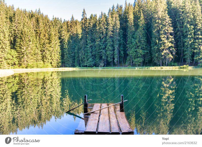 Forest See in den Bergen mit blauem Wasser Himmel Natur Ferien & Urlaub & Reisen Pflanze Sommer schön grün Sonne Baum Landschaft Erholung Strand Wald